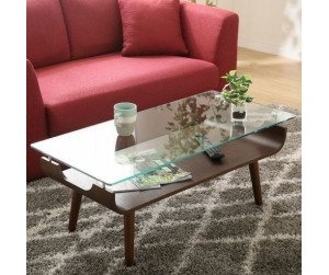 Bàn sofa wooden low